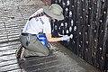 091917 FortPulaski Recovery Staff 057 (36500028734).jpg