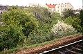 192R07180490 Bereich künftige Trasse der U6, Blick von Bahnhof Floridsdorf Bahnsteig auf den Bereich der künftigen Endstelle der U6.jpg