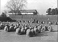 1951.1.4 대구 신병훈련소 사격술 예비훈련 (7445955118).jpg