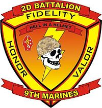 2-9 insignia current as of 2010