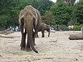 2012-09-15 Tierpark Berlin 02.jpg