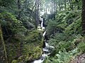 20120830 08 Ireland - Co. Wicklow - Glendalough (7961543342).jpg