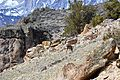 20140419-0643 Hot Creek.JPG
