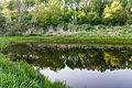20150510 Hönower Weiherkette - Untersee by sebaso IMG 4092.jpg