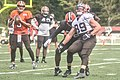 2016 Cleveland Browns Training Camp (28691921775).jpg