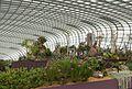 2016 Singapur, Gardens by the Bay, Wewnątrz Kwiatowej Kopuły (01).jpg