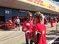 2018 British Grand Prix - Sebastian Vettel (03).jpg