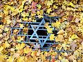 251012 Powązki Jewish Cemetery in Warsaw - 00.jpg