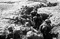 254-я стрелковая дивизия 11-ой армии на позициях под Старой Руссой. Лето 1941.jpg