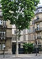 270-272 boulevard Saint-Germain, Paris 7e.jpg