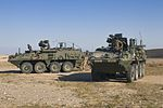 40th CAB and 366th Chemical Co. train for CBRN attack 160209-Z-JK353-021.jpg