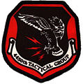 4450th Tactical Group.jpg