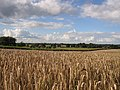 49849 Wilsum, Germany - panoramio - Roland Meijerink (6).jpg