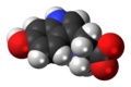 5-Hydroxy-L-tryptophan-zwitterion-3D-spacefill.png