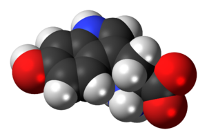 Space-filling model of the 5-hydroxytryptophan...