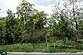 51-101-5043 парк Аркадія Одеса.jpg