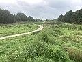 5813 Groen.Westpark.DeHeld.Leegkerk.202009 Brug Water Zwedenlaan Tarralaan Scounting VariaSki Hoogkerk Buitengebied.jpg