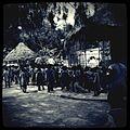 A-POIS Giuditta Nelli - Senegal 2012 - Dakar, Back in time at the zoo 2.JPG