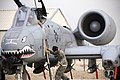 A1C Michael Ward climbs the crew ladder to assist Capt. Eric Fleming get ready for a mission in an A-10 at Bagram Airfield.jpg