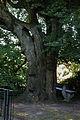 AT-122319 Gesamtanlage Augustinerchorherrenkloster 086.jpg