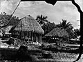 A cluster of Pacific Island dwellings (AM 79898-1).jpg