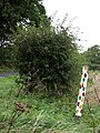 A colourful fence post - geograph.org.uk - 950552.jpg