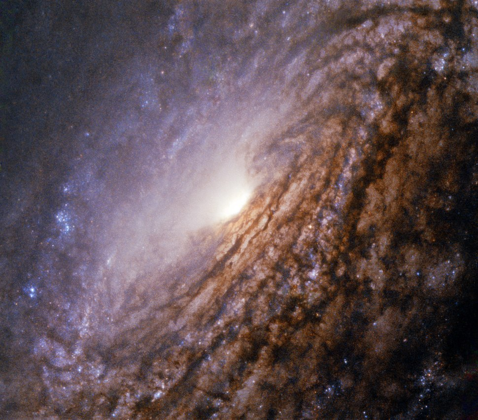 A galaxy with a bright heart NGC 5033