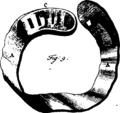 A general system of surgery Fleuron T114320-26.png
