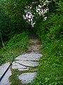 A pathway at Shogran.JPG