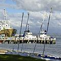 Abaconda Port of Tauranga.jpg