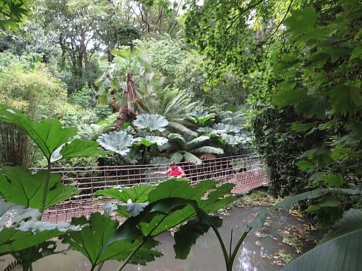 Abbotsbury Subtropical Gardens 01