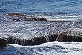 Acadia 2012 08 24 0088 (7958595092).jpg