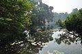 Acharya Jagadish Chandra Bose Indian Botanic Garden - Howrah 2011-01-08 9863.JPG