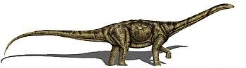 Adamantisaurus mezzalirai 2copia.jpg