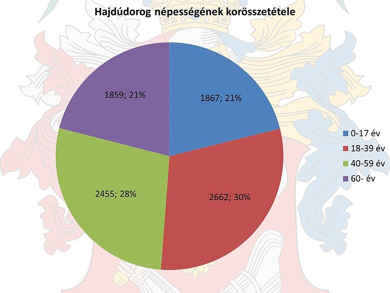File:Age Diagram of Population Hajdudorog.jpg