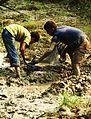 Agriculture field preparation 2.JPG