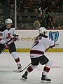 Albany Devils vs. Portland Pirates - December 28, 2013 (11622844786).jpg