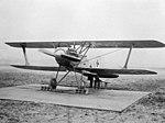 Albatros D.X.jpg