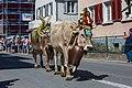 Alpabfahrt, Mels. 2019-09-14 13-05-59.jpg