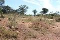 Alto Araguaia - State of Mato Grosso, Brazil - panoramio (1211).jpg