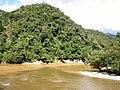Amazonia near Gualaquiza - Ecuador.jpg