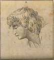 An 'ideal head' shown to have slight idiosyncrasies in physi Wellcome V0009087EBL.jpg