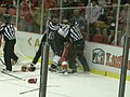 Anaheim Ducks vs. Detroit Red Wings Oct 8, 2010 54.JPG