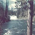 Another Yellowstone scenic view (1974 photo).jpg