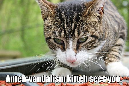 Anteh-vandalism kitteh lolcat.jpg