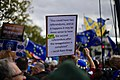 Anti-Brexit, People's Vote march, London, October 19, 2019 07.jpg