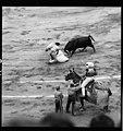 Aplin B13436 Spain1968 Madrid Bullfight 0013 (47451364611).jpg