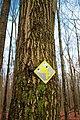 Appalachian Park (2) (8382389716).jpg