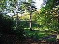 Arboretum - geograph.org.uk - 273907.jpg