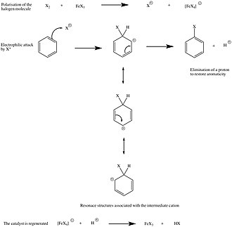 Halogenation - Halogenation of benzene